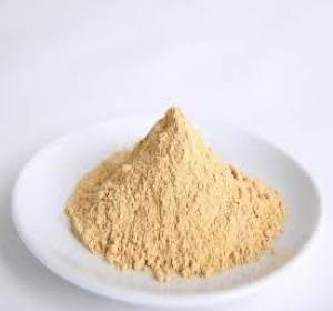 Hình ảnh về bột đông trùng hạ thảo